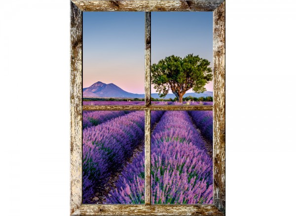 3D Fenster auf Wandtapete mit Blick auf Lavendelfeld