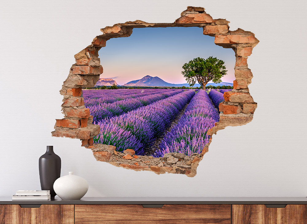 3D Wandbilder
