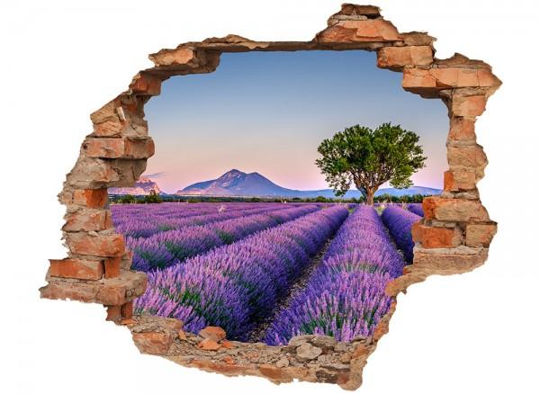 3D Wandbild Wanddurchbruch Lavendelfeld