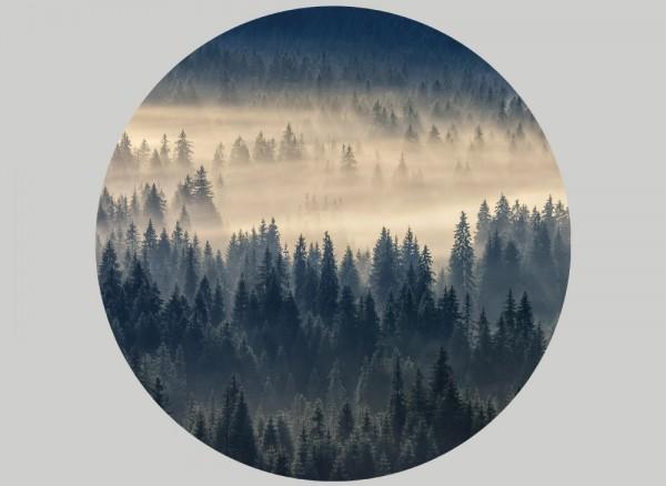 Aufkleber rund für Wände und Möbel Nebelwald