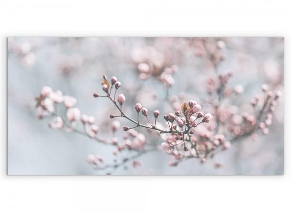 Kirschblütenzweig auf Leinwand