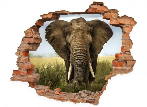 Ansicht Wandtatoo Elefant Wanddurchbruch